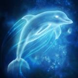 Avatar von Blackdolphin